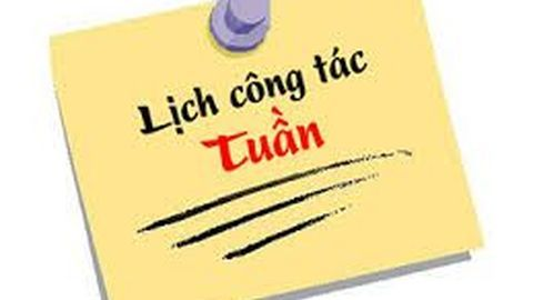 LỊCH TUẦN 46